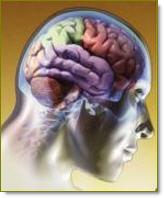 fortaleza-personal-inteligencia-emocional