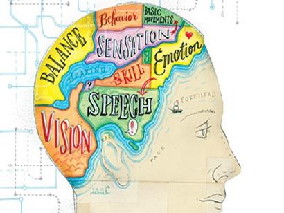 la inteligencia se puede desarrollar